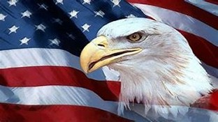 American Flag & Bald Eagle